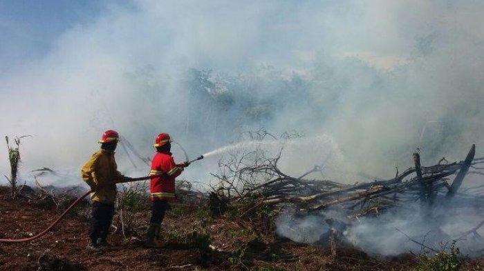 Awal Juli, Sejumlah Kabupaten di Aceh Dilanda Karhutla